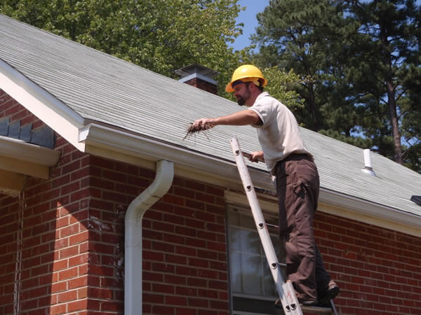 residential gutter cleaning Fairfax County